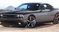 Bandit - US304 on Dodge Challenger R/T
