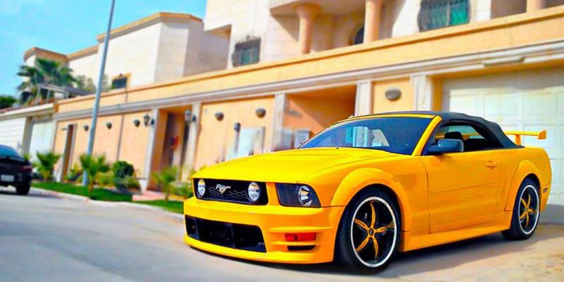 Ford Mustang S822 Dynasty