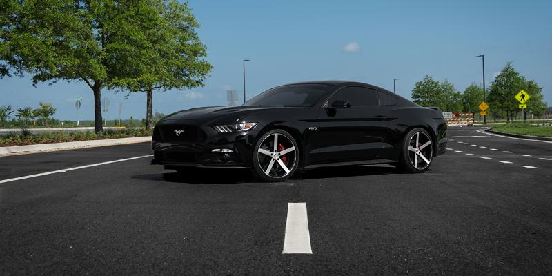 Ford Mustang Spec-1 Racing SP-10