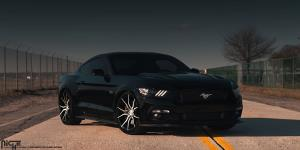 Ascari - M166 on Ford Mustang