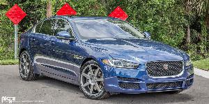 Verona - M149 on Jaguar XE