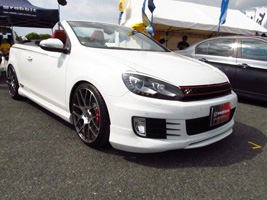 Volkswagen EOS with TSW Nurburgring