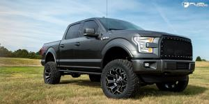 Assault - D576 on Ford F-150