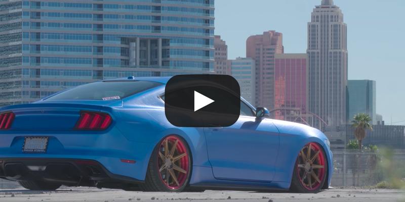 2016 Mustang Wheels >> American Force Edition 2016 Mustang Gt 5 0 Gallery